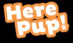 HerePup_Orange-11.png