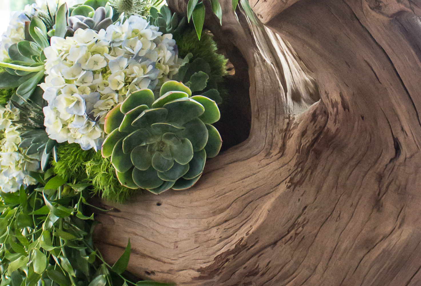 Cedar Driftwood Sculpture by Pebble and Branch Floral Design