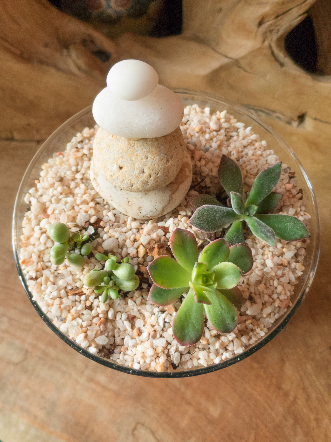 Terrariums Pebble and Branch Floral-21.jpg