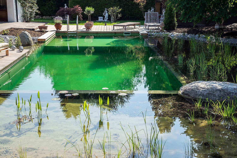 Epp-Gartenbau-Teich-2-161.jpg