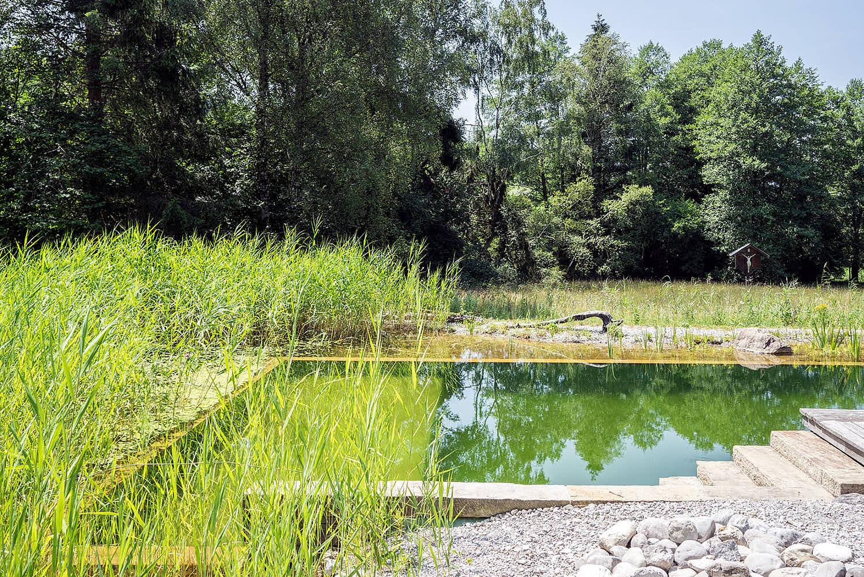 Epp-Gartenbau-Teich-3-184.jpg