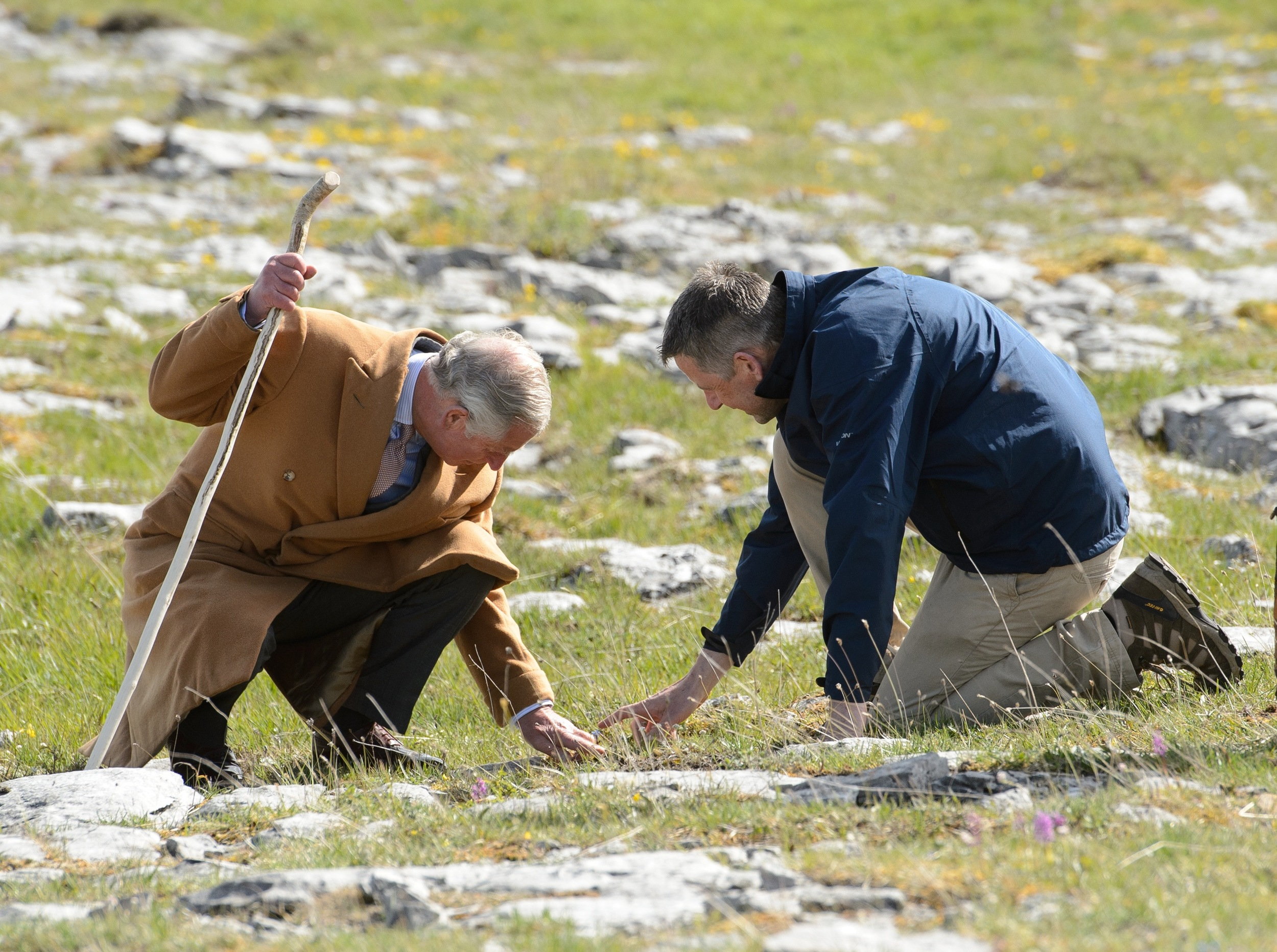 Ashoka Fellow Dr. Brendan Dunford gives HRH Prince Charles a tour of the Burren.