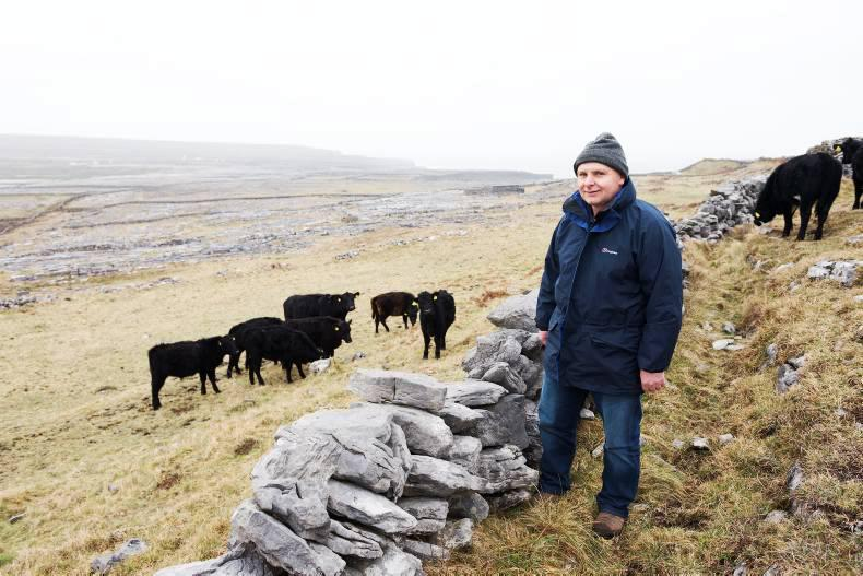 'A local approach to agri-environmental payments'  - read the latest article on Burren LIFE's influence in the Irish Farmer's Journal (May 2016)