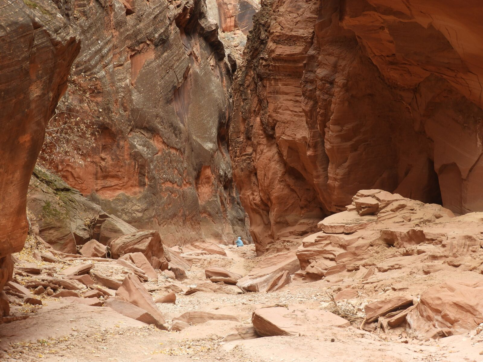 This is tiny me in a big canyon having a starring contest with a baby rattlesnake unaware as Casey Crosbie snaps a photo. I'm not suggesting you do this. (Have a starring contest with a baby rattler, that is. Snap all the photos you want.)