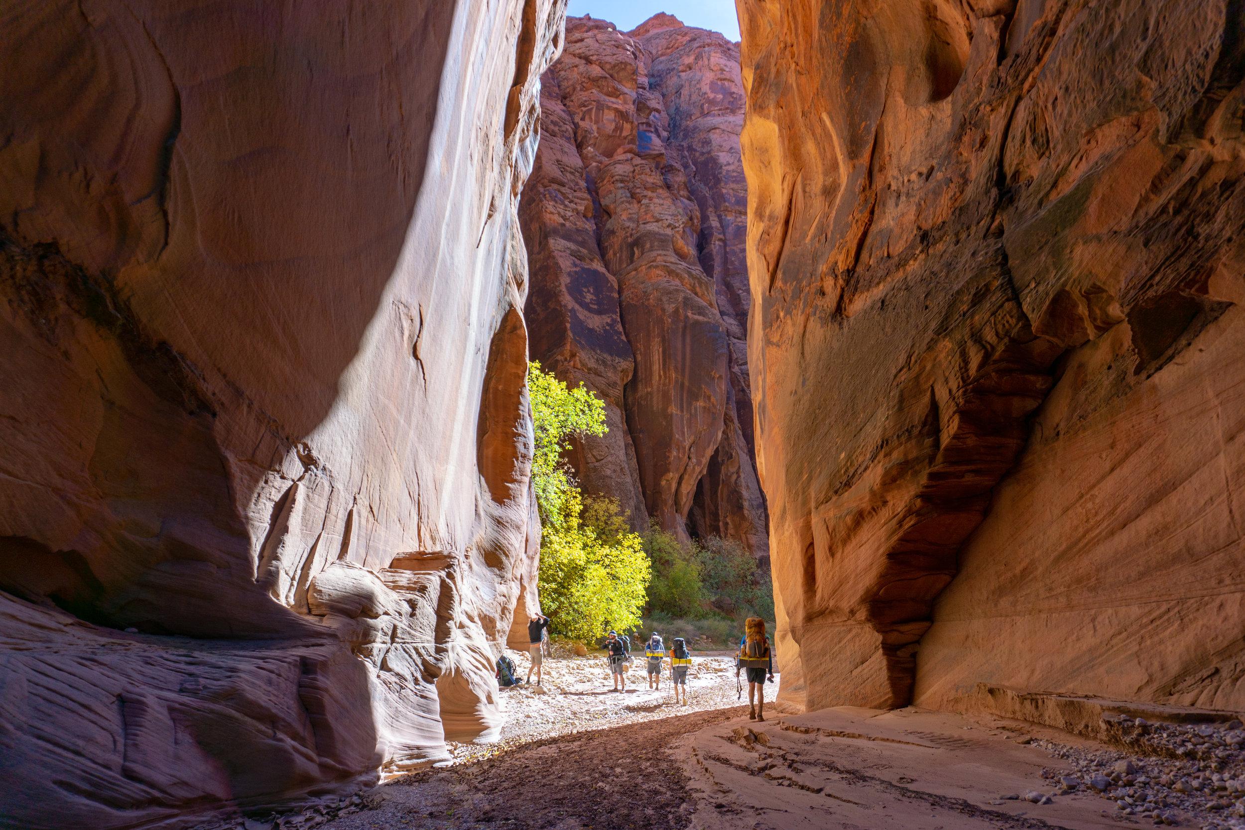 Open Enrollment Wilderness Trips -