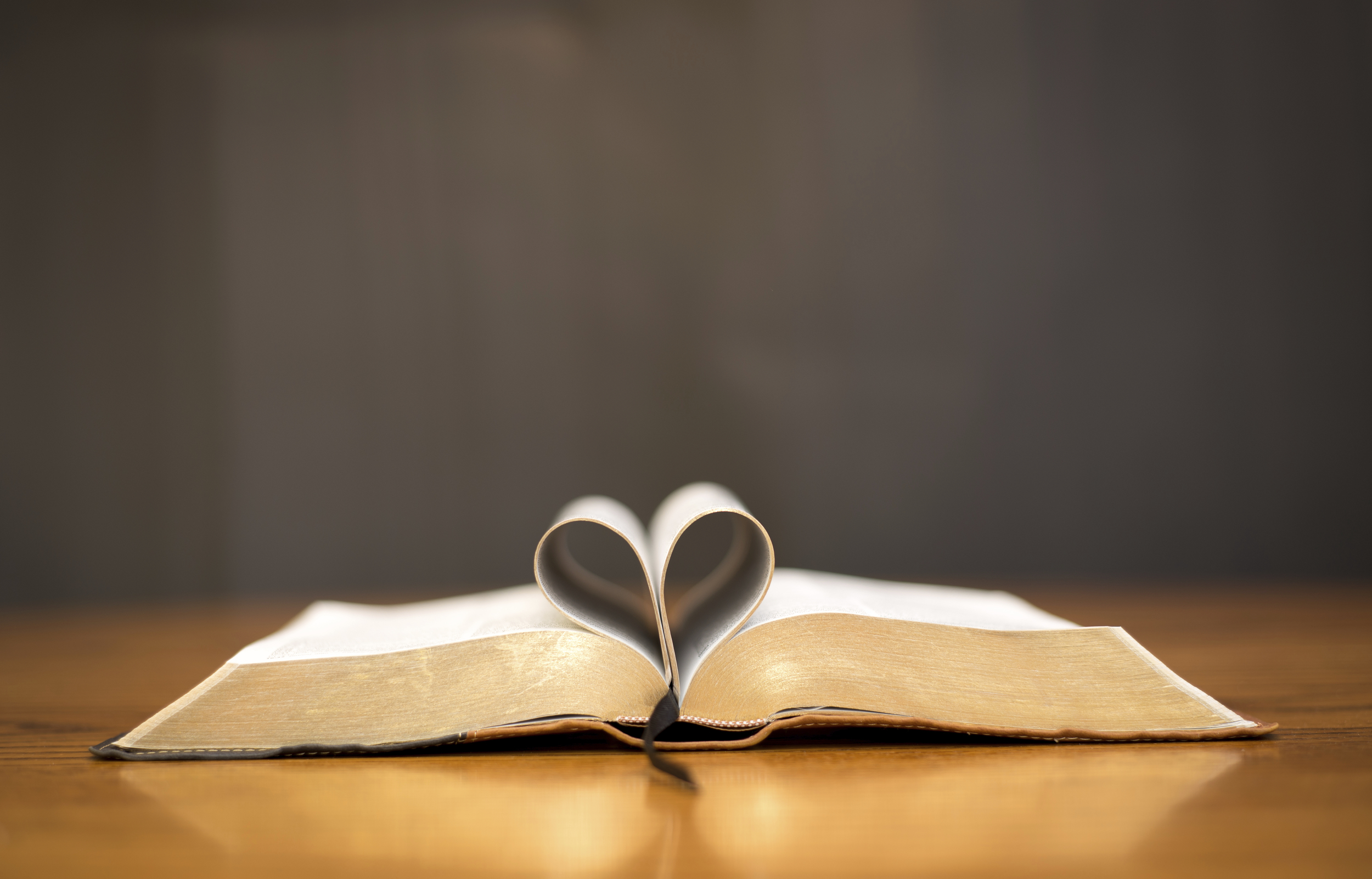 stock-photo-23204617-bible-with-a-heart.jpg