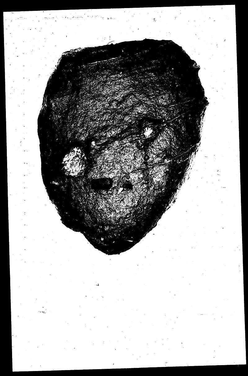 File 4786: Shiloh, Ohio - July, 1957 #6
