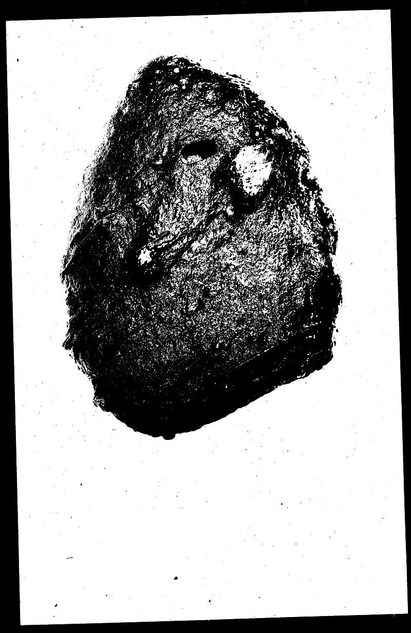 File 4786 - Shiloh, Ohio - July, 1957 #8