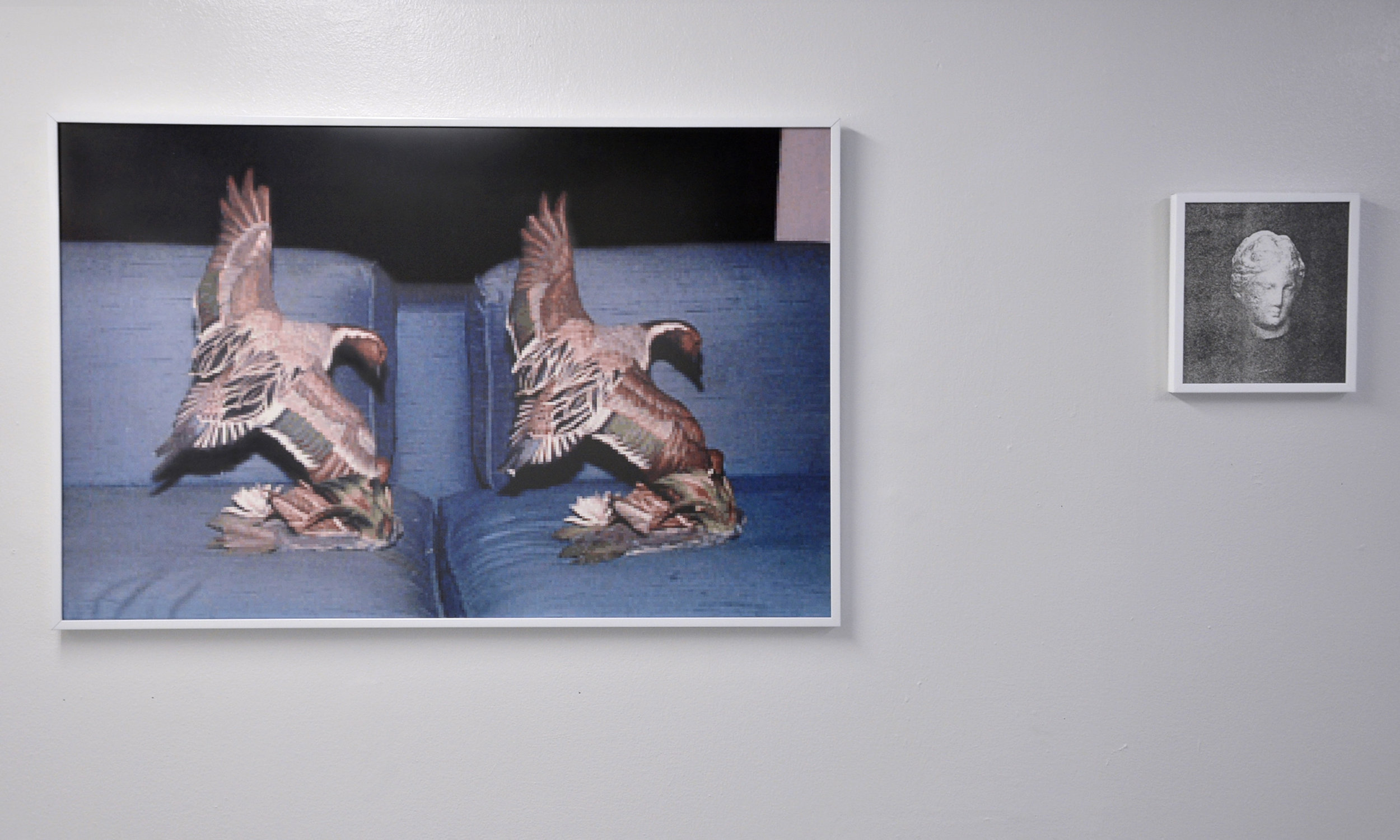 Installation view of  Altered States  at Valet