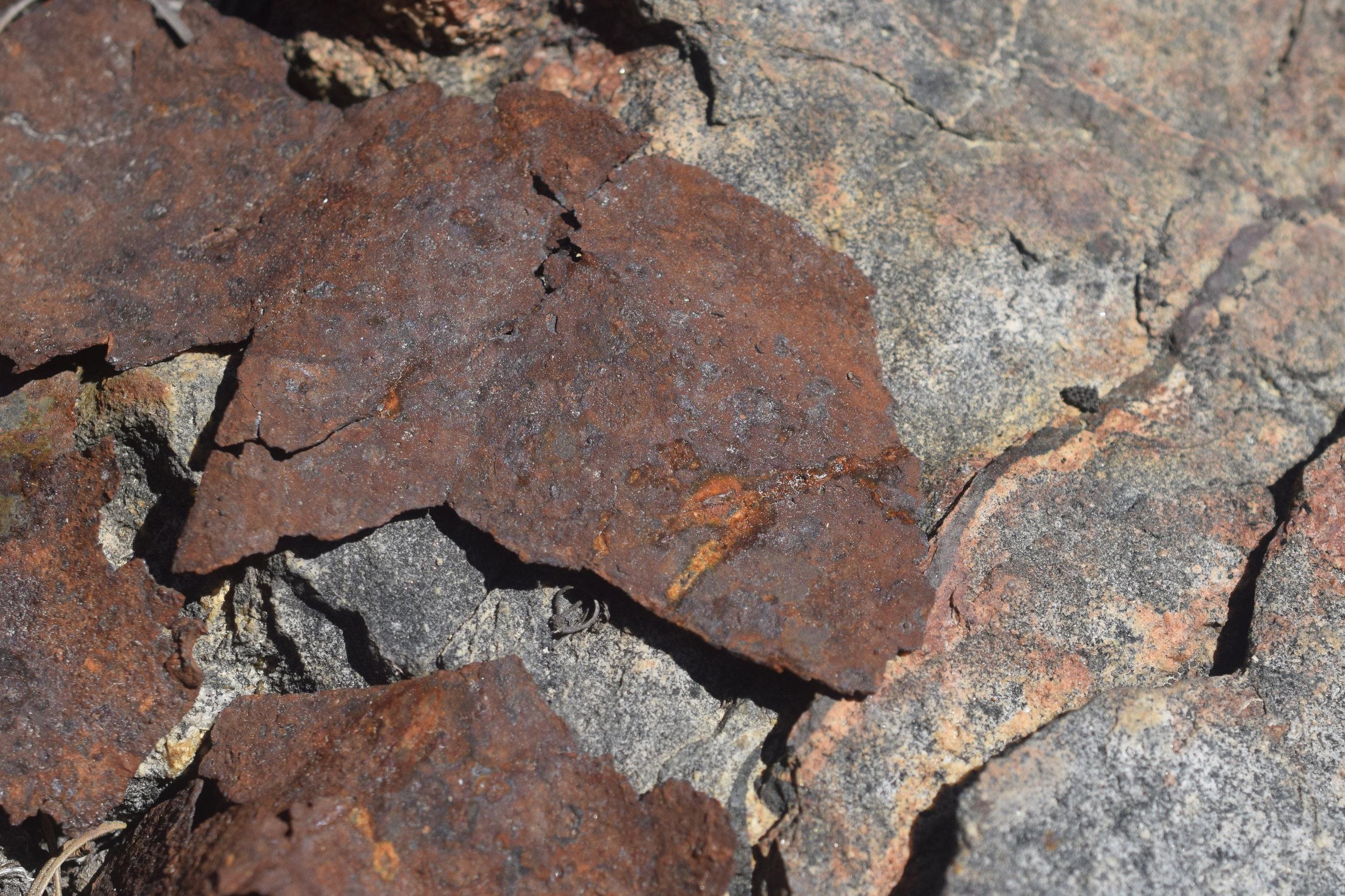 Rock-Rust 1.JPG