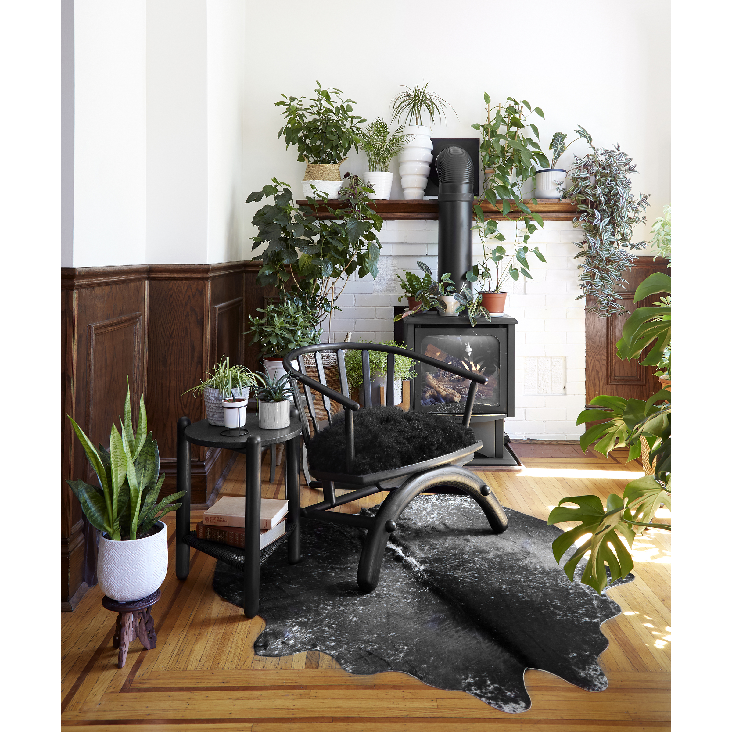 Rainbow Chair - Living Room