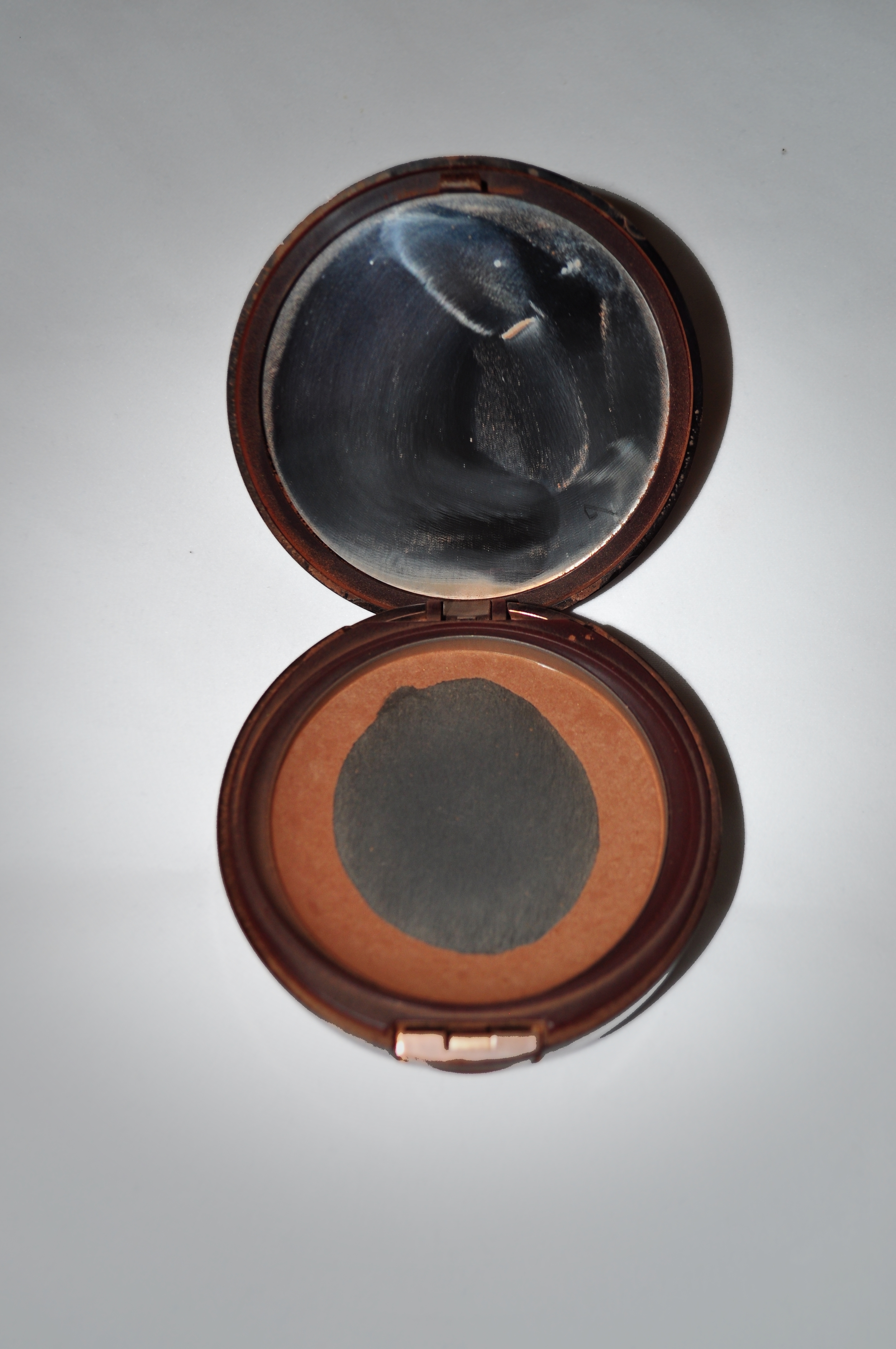 quest for bronzer pic 1.jpg