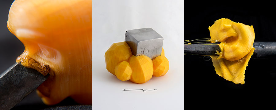 Image: Hector Carmona Miranda.Left to right: Remembering how I used to burn my toys as a kid  (detail), Rock  (detail), Empowering Punch  (detail) . 2015. Photography.