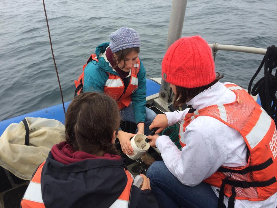 Ph.D student Catherine Davis showing undergraduates how to sample plankton
