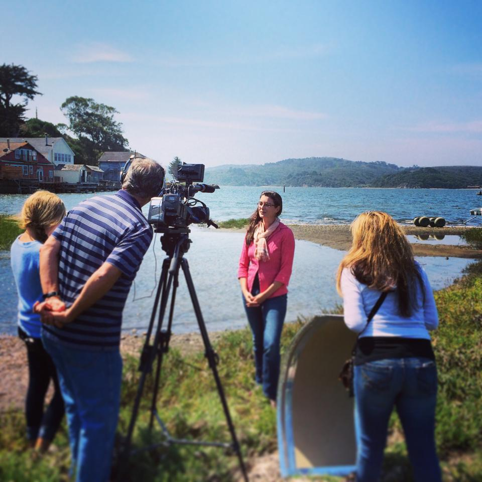 Tessa Hill being interviewed near Tomales Bay