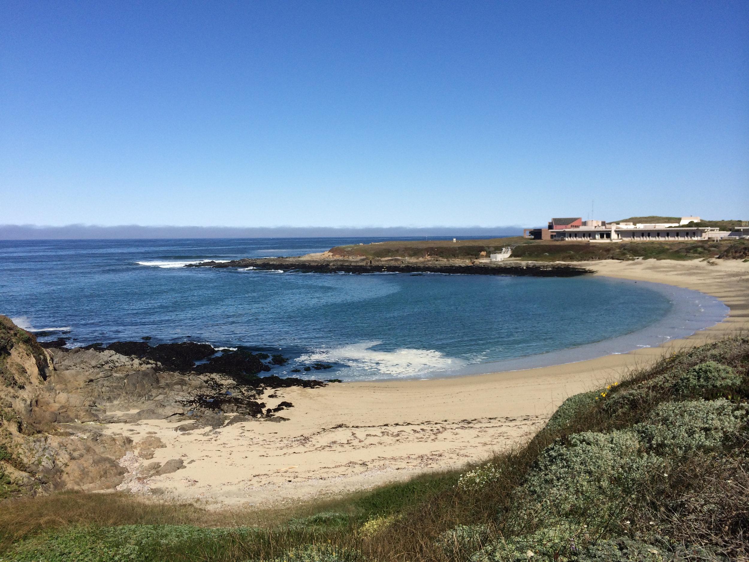 Bodega Marine Laboratory. Photo credit: Tessa Hill