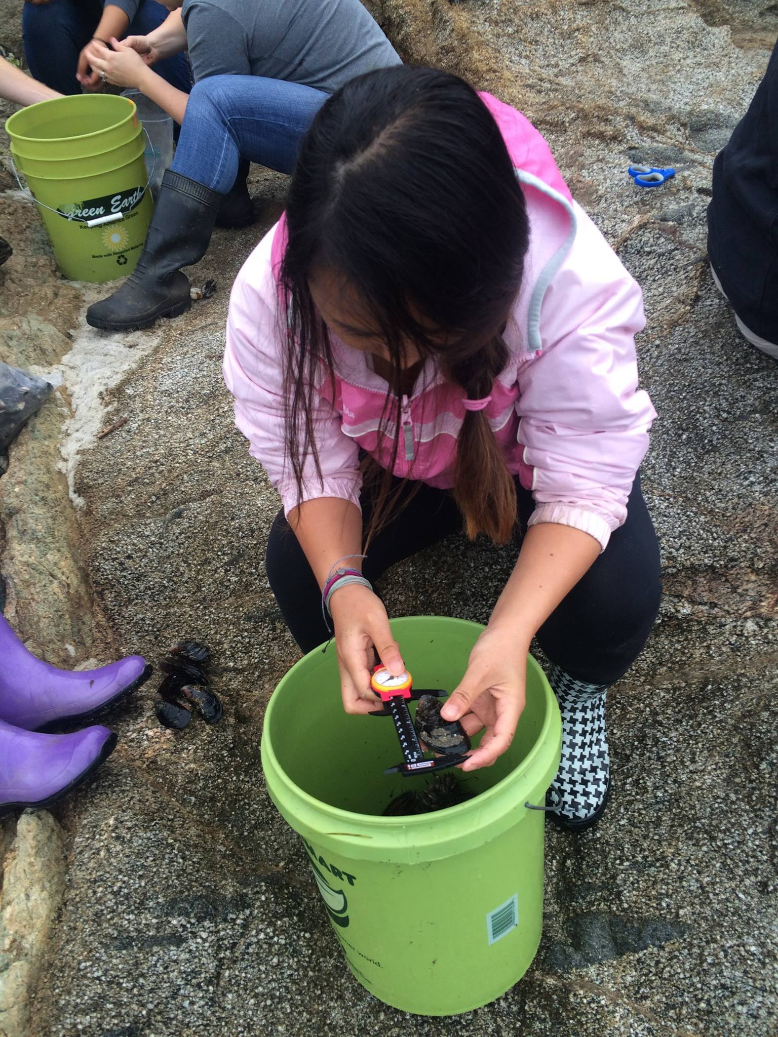 Wendy sampling mussels on Bodega Marine Reserve