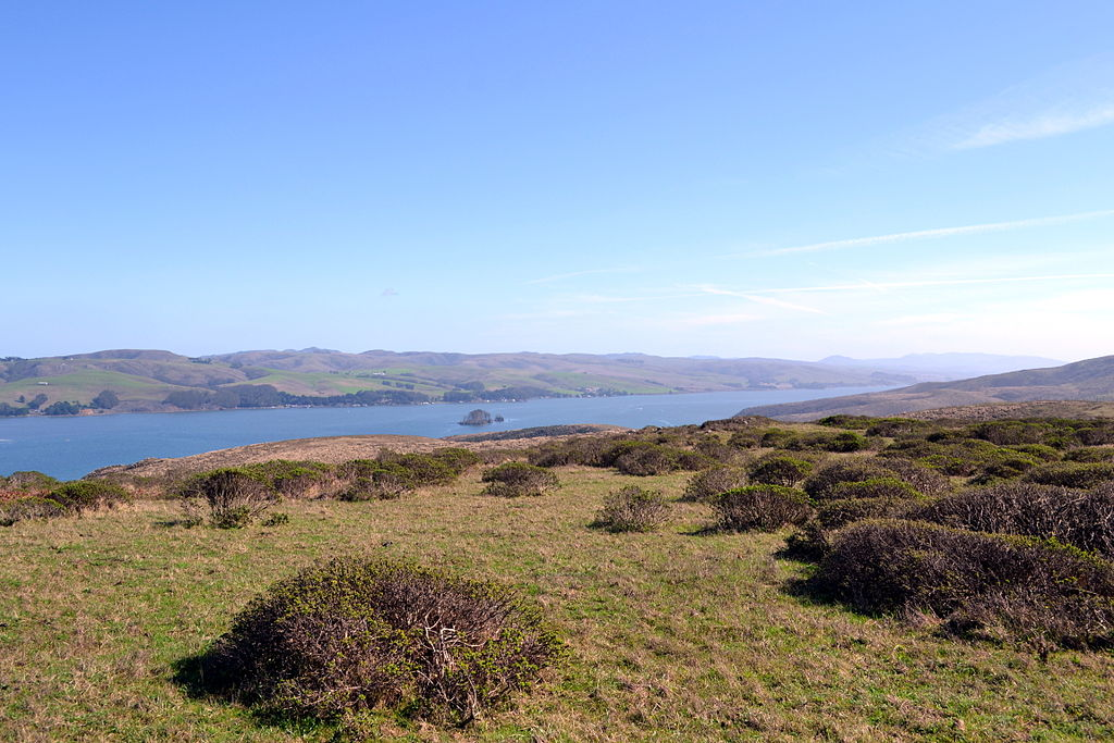 Tomales Bay, CA (Wikimedia Commons)