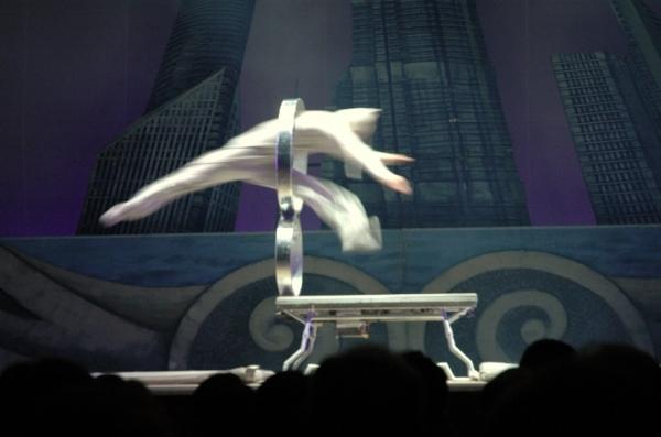 Chinese acrobat flying