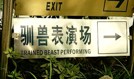 Beast Perfoming