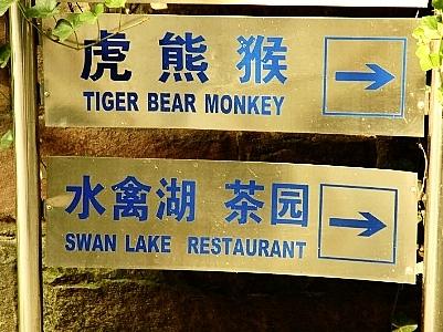 Tiger Bear Monkey Swan