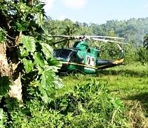 choppers in field