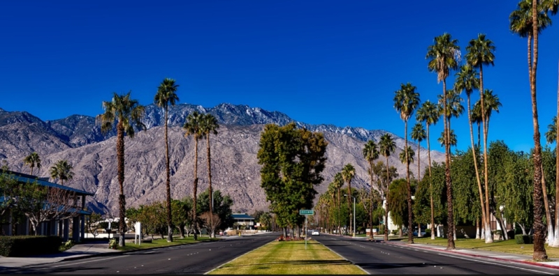 Palm Springs   city road.jpg