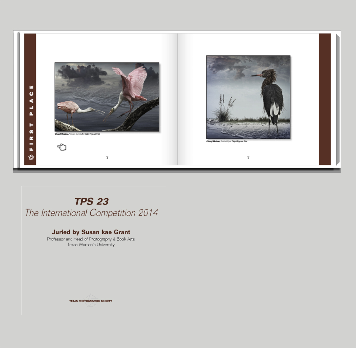 First Place -  Roseate Spoonbills  -  Texas Society International Competition 2014  catalogue