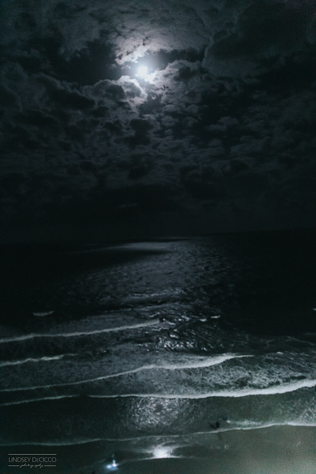 2/365 - Really pushing the limits of my camera's ISO to capture the moonlight on the water.