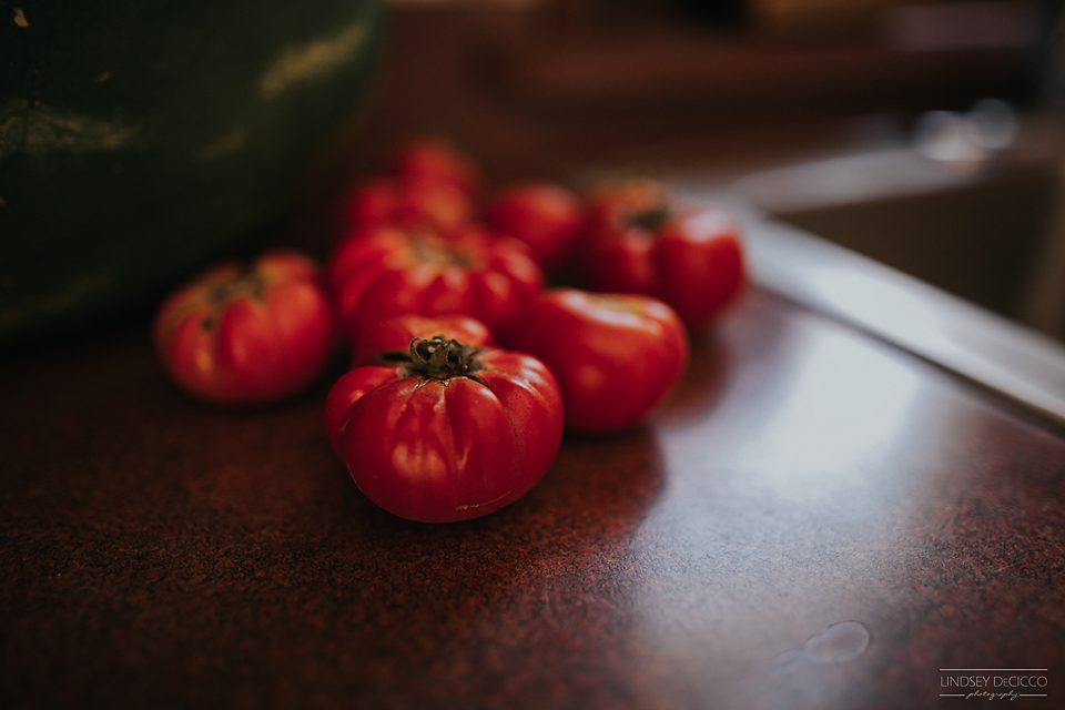 11/365 - first tomatoes from the garden