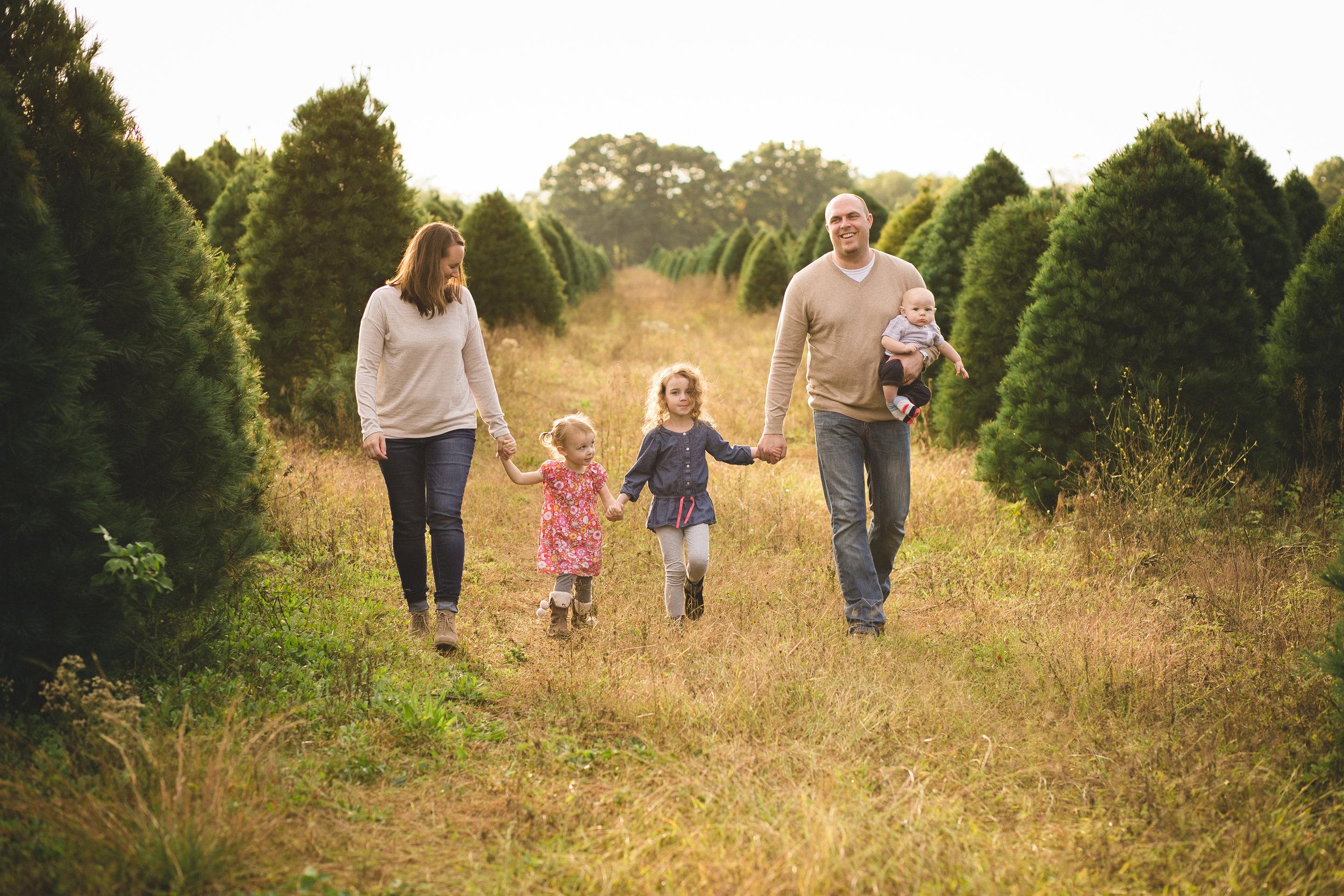 Professional Family Photos, walking at Christmas Tree Farm