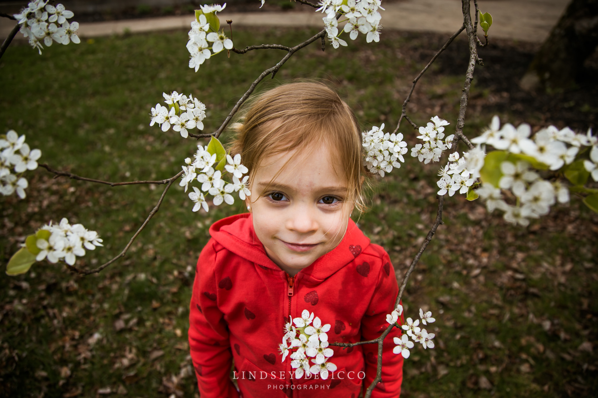daughter framed with spring blossoms