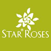 starRoses-g170.jpg