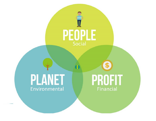What would you add to this Diagram to make it a holistic approach?