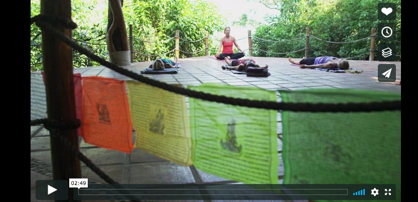 the Jungle Family: Tailwind Jungle Lodge