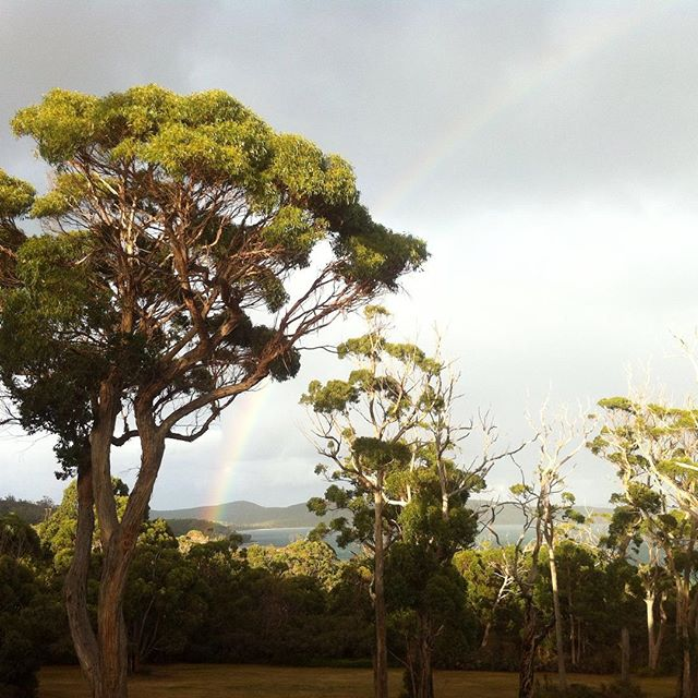 Good morning Australia! #australia #tasmania #see #hobartandbeyond #nature #rainbows #discovertasmania