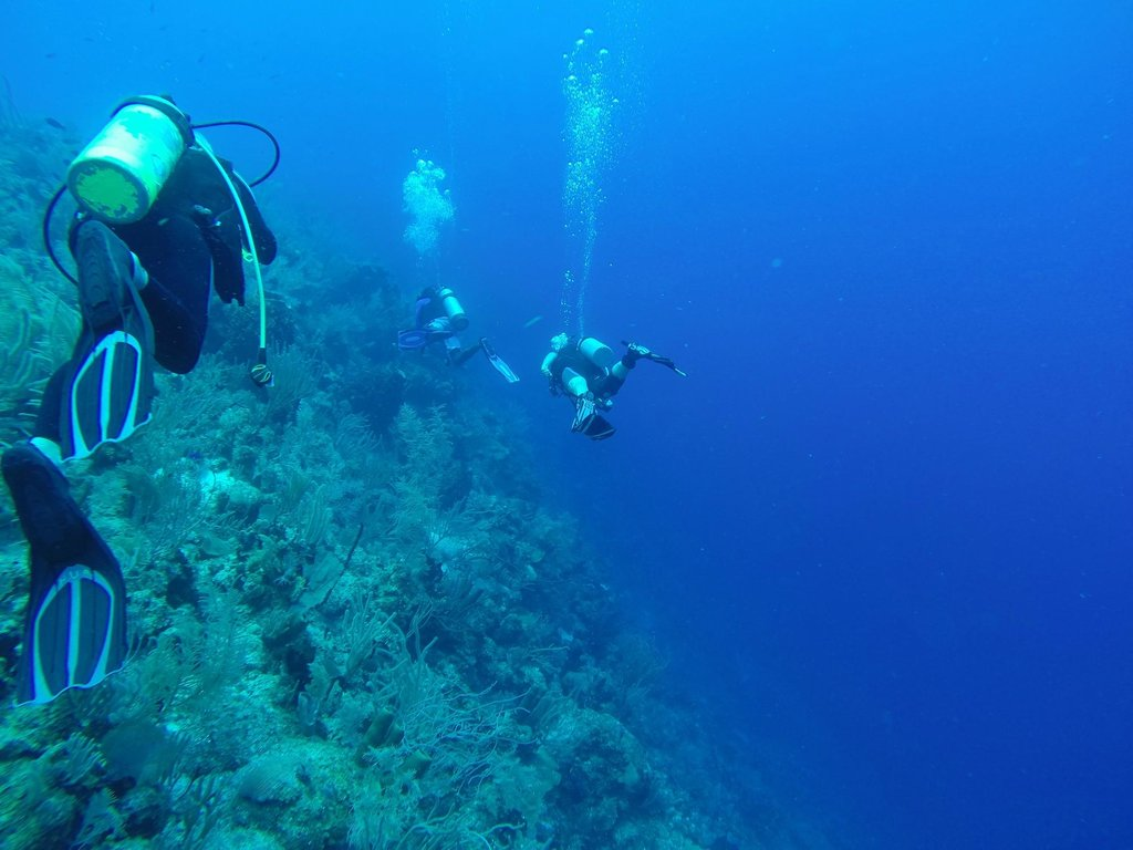 hopkins-underwater-adventures-2.jpg