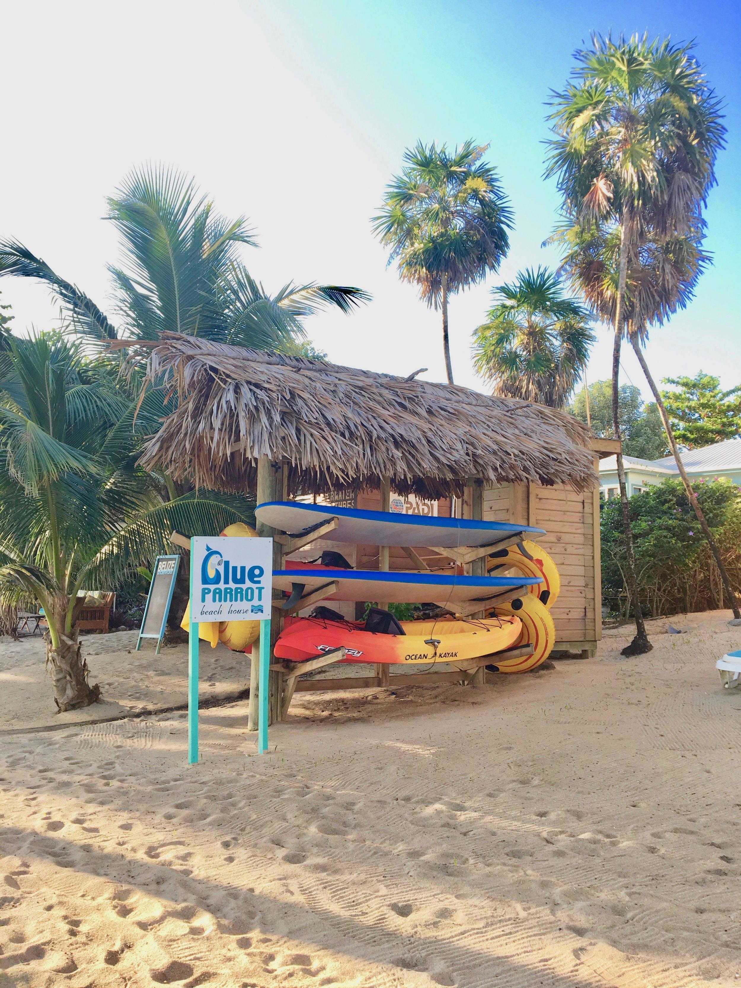 beach toys2.jpg