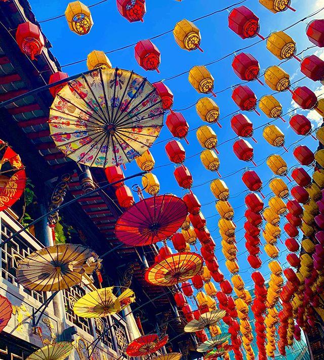 Captivated by Chengdu's charm #chengdu #chengduexpat