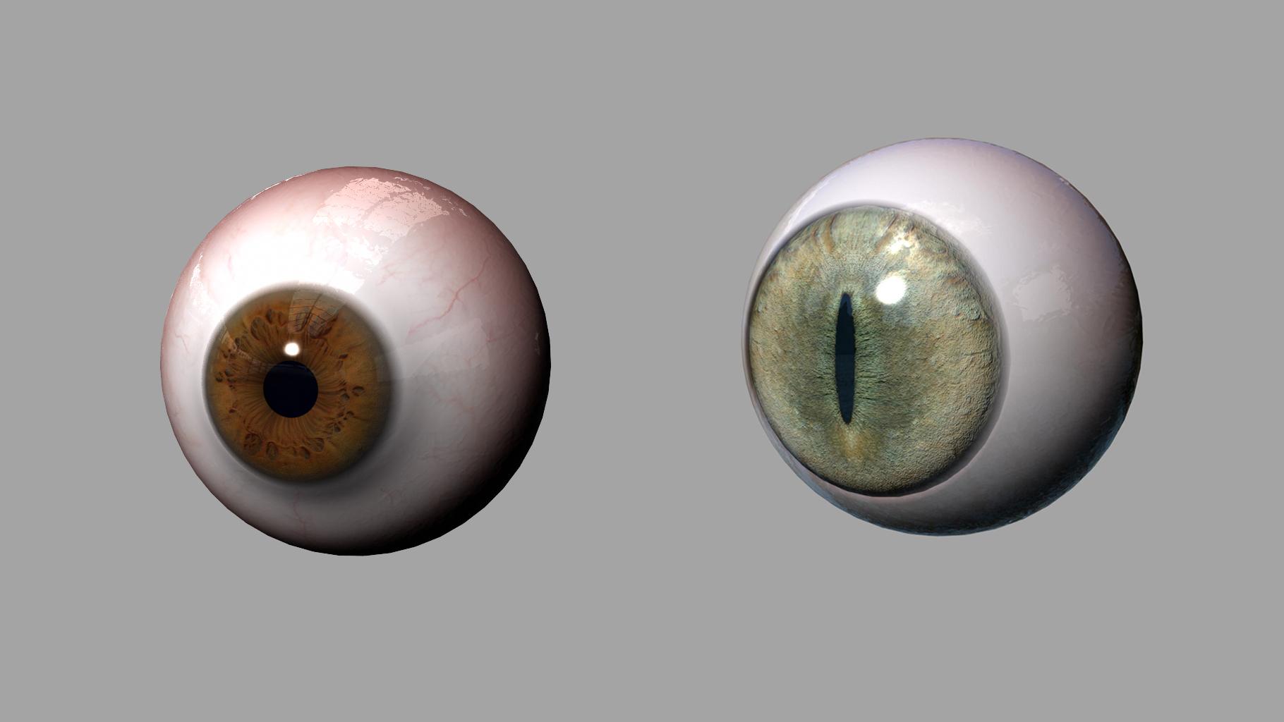 CTS_eyes.jpg