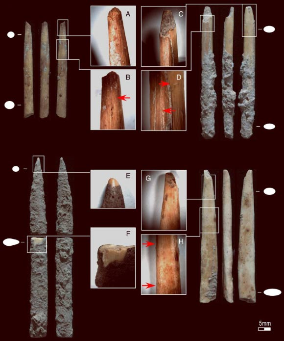 Four of the projectile point fragments recovered from Kuumbi Cave: (A, C and G) impact fractures; (B and D) possible retrieval cut marks; (E) rounded tip; (F) post-depositional fracture revealing bone surface; (H) change in surface appearance. Magnification: A, C, G, and H at 65x; B at 85x; D at 100x; E at 200x. Image credit: Michelle C. Langley et al.