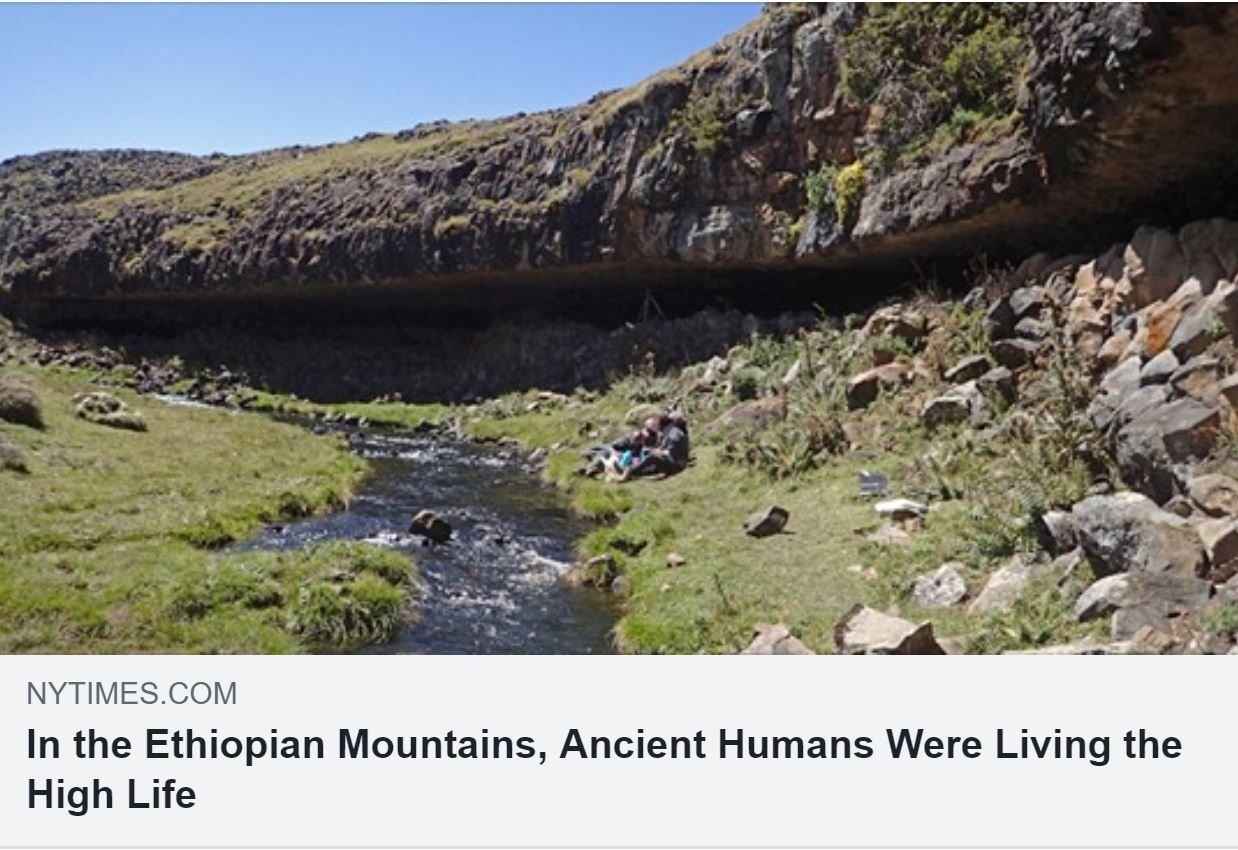 New York Times Ancient Humans Were Living the High Life banner.JPG