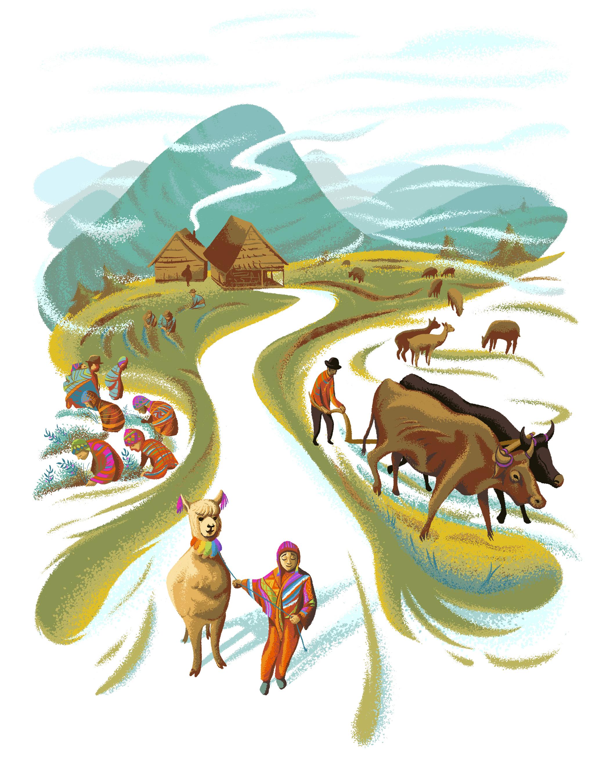 HaydenCurrie-Illustration-Transnational-Institute.jpg