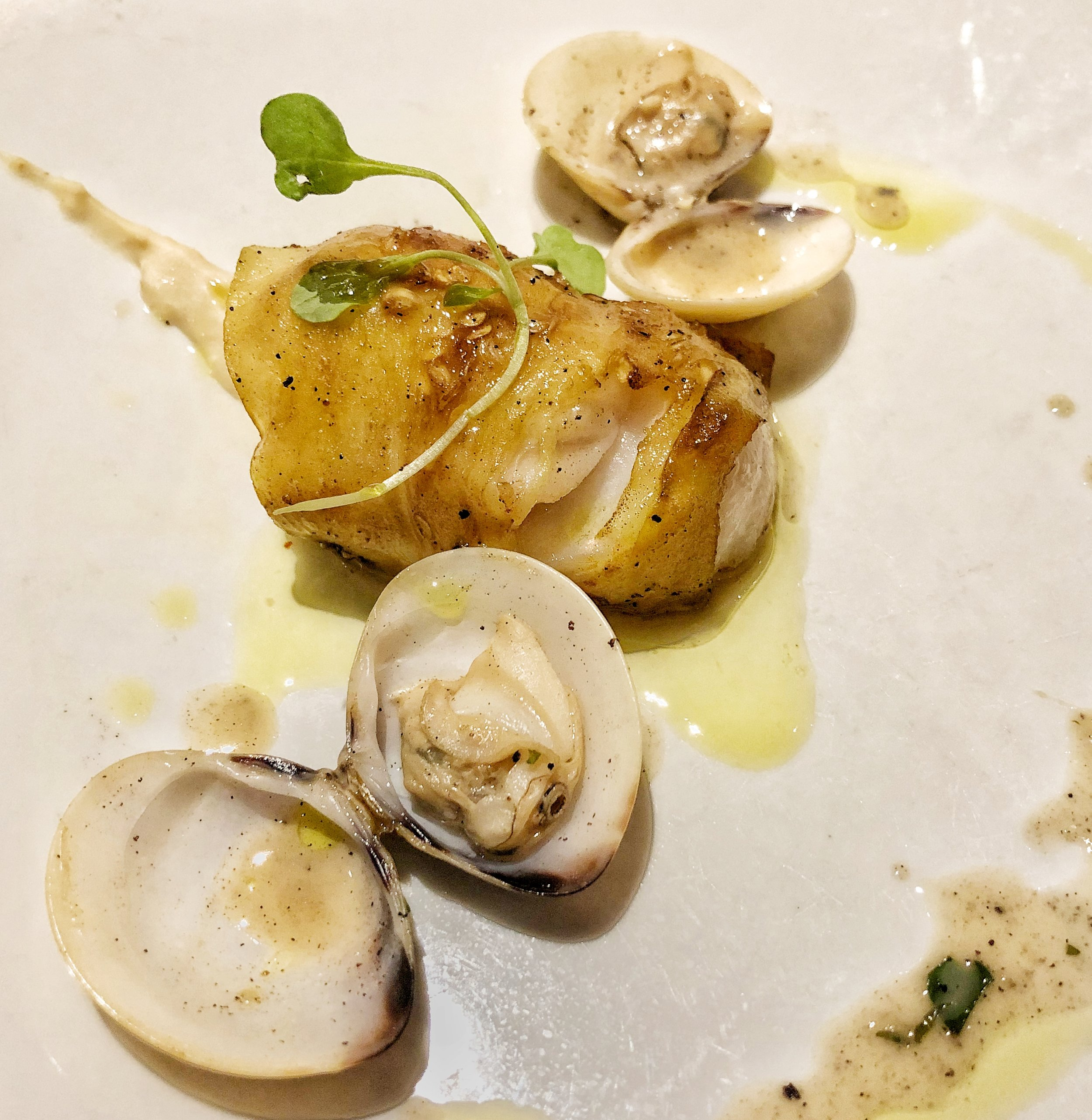 Eggplant Wrapped Grouper - cannellini bean sauce, clams
