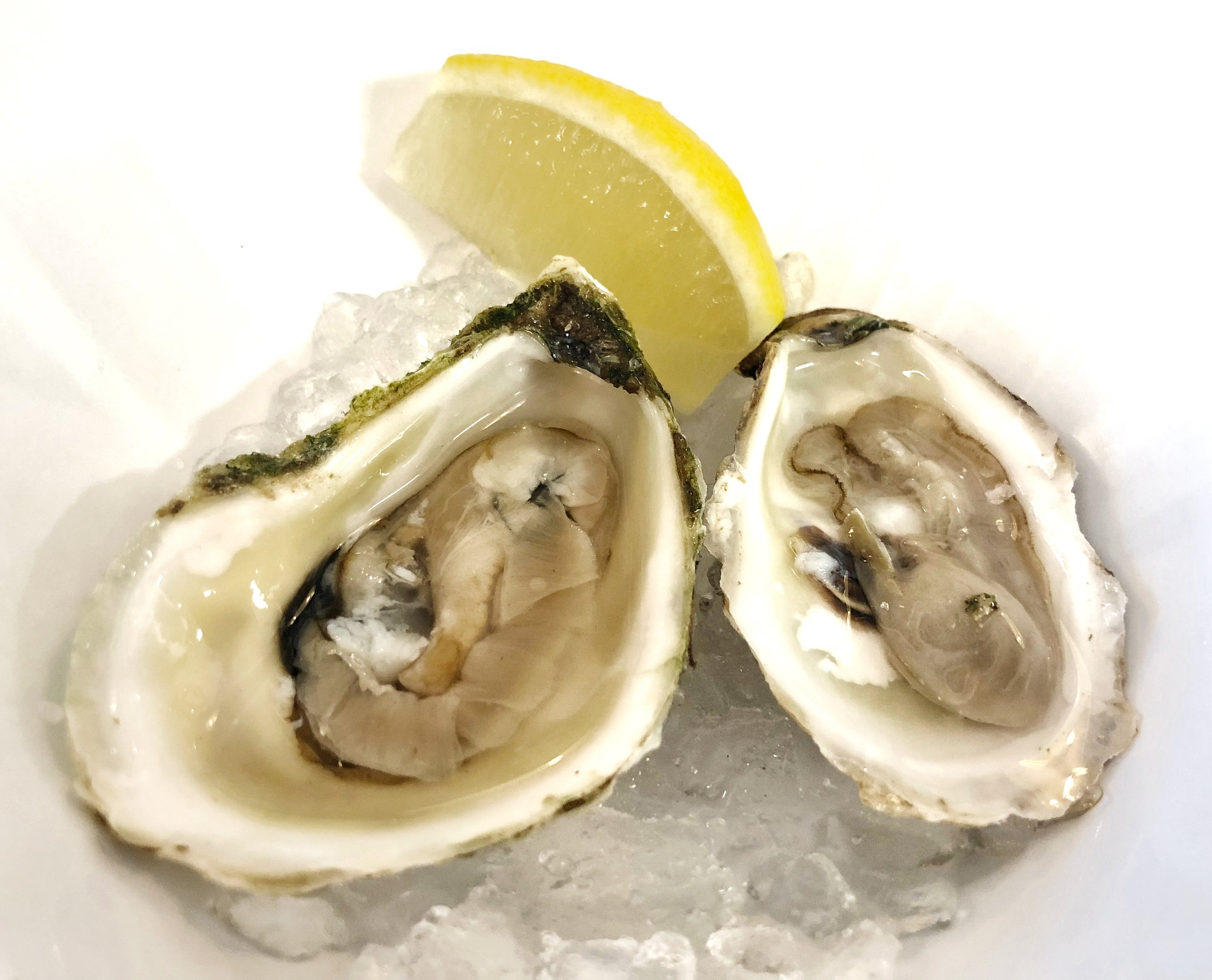 Oysters - Oyster Happy Hour runs every Monday-Friday from 4pm-7pm