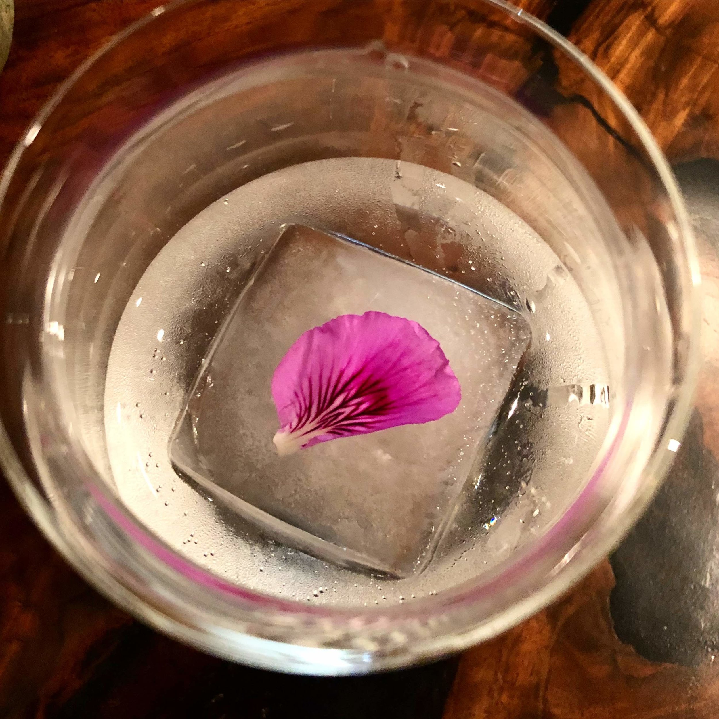 Non-Alcoholic Gin & Tonic - Tasted just like a real G & T. Seriously amazing. Stocked by the Seedlip brand.