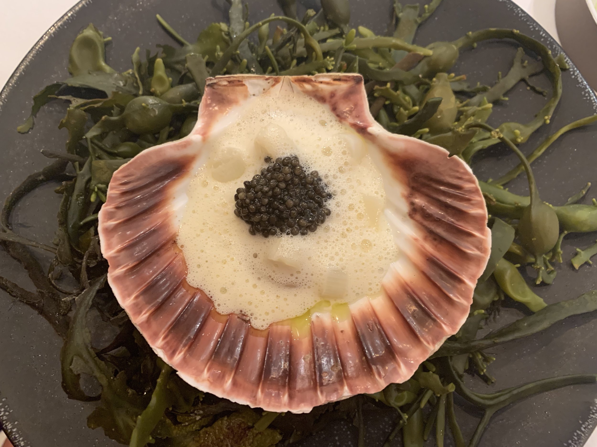 Scallop - This scallop was caught the day before and brought to the restaurant alive, where it was served simply with a little caviar on top.
