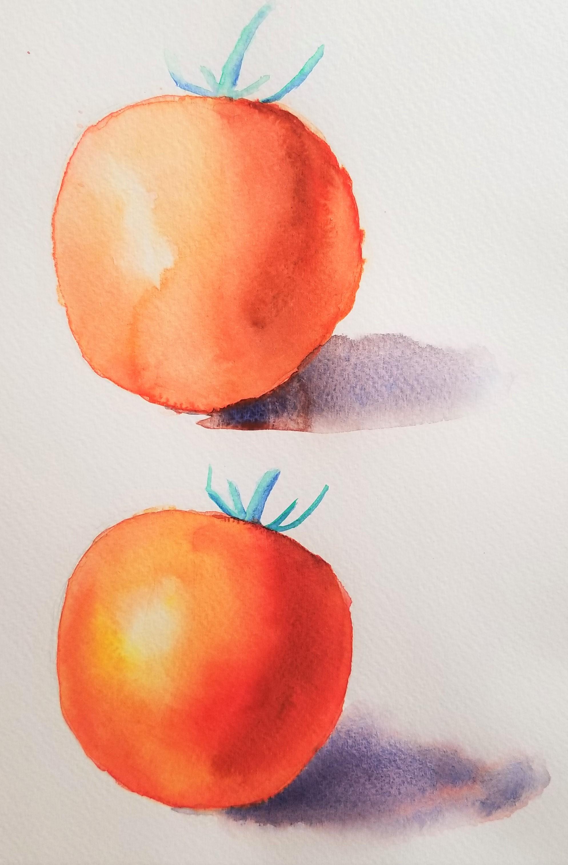 Tomato Comparison.jpg