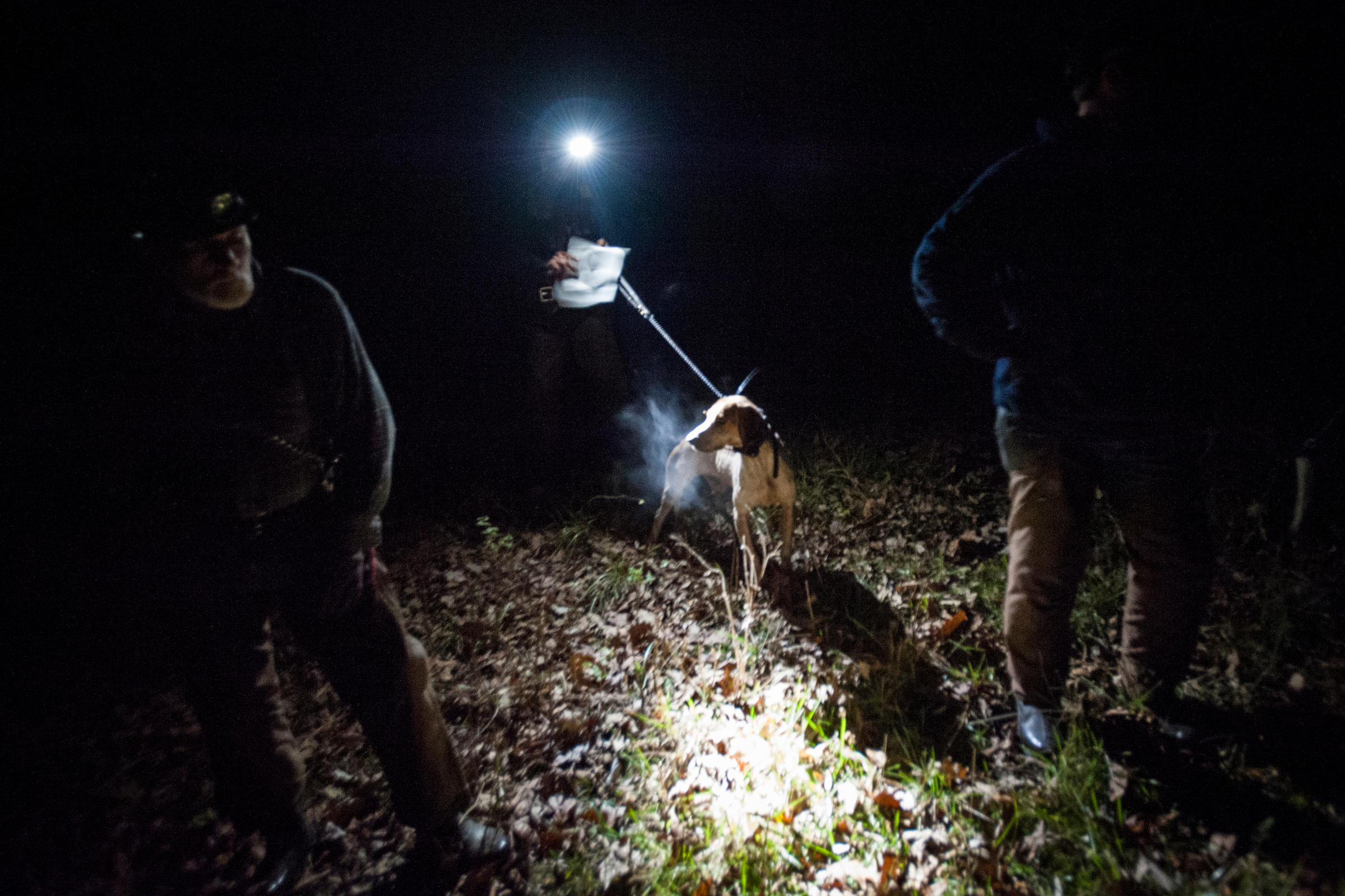 Paul Vaughn left, Danny Hayes and his dog Bullet, and Shannon Beckman prepare to release their dogs during a United Kennel Club competition hunt out of a club in Stover, Mo.