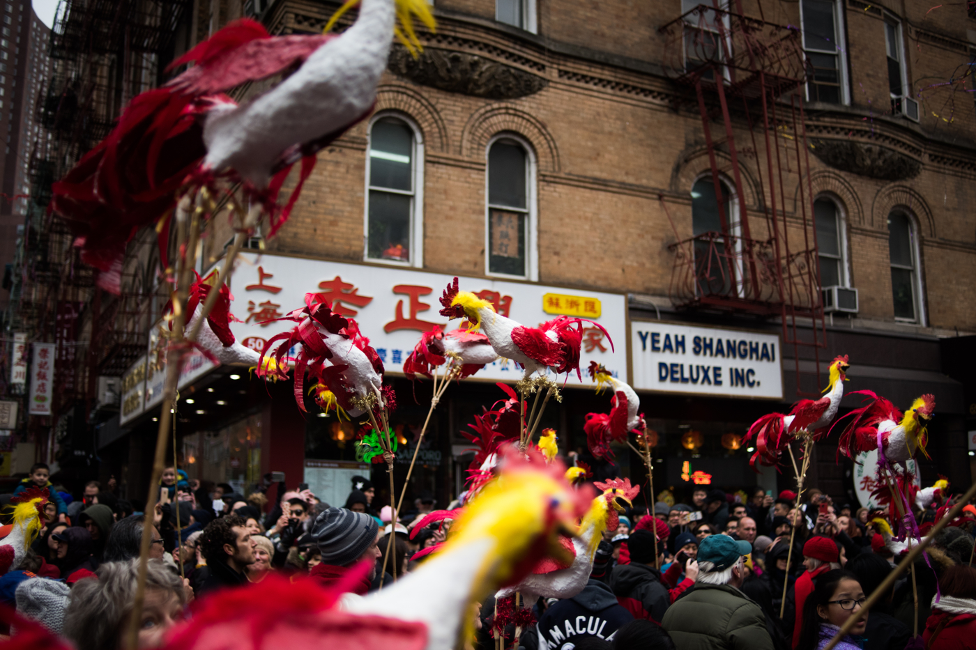 People from a group of families with Chinese children carry decorative roosters during the Chinese New Year Parade in the New York's Chinatown neighborhood.
